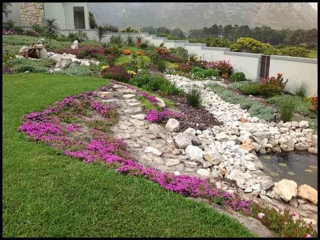 Fynbos Garden